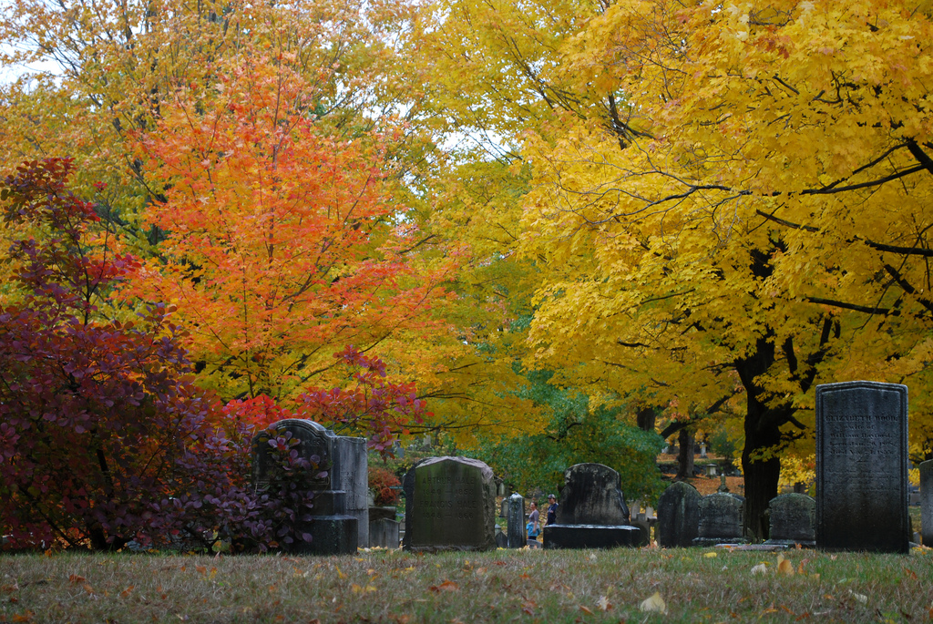 Forest Hills Cemetery via kariek via Flickr (Creative Commons)